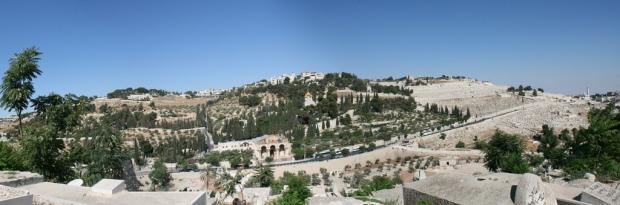 Mountofolivespanoramic